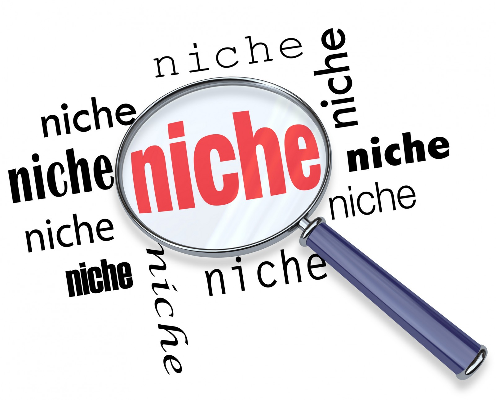 Niche Marketing Strategy Is Crucial For SMEs' Success, New Study Says
